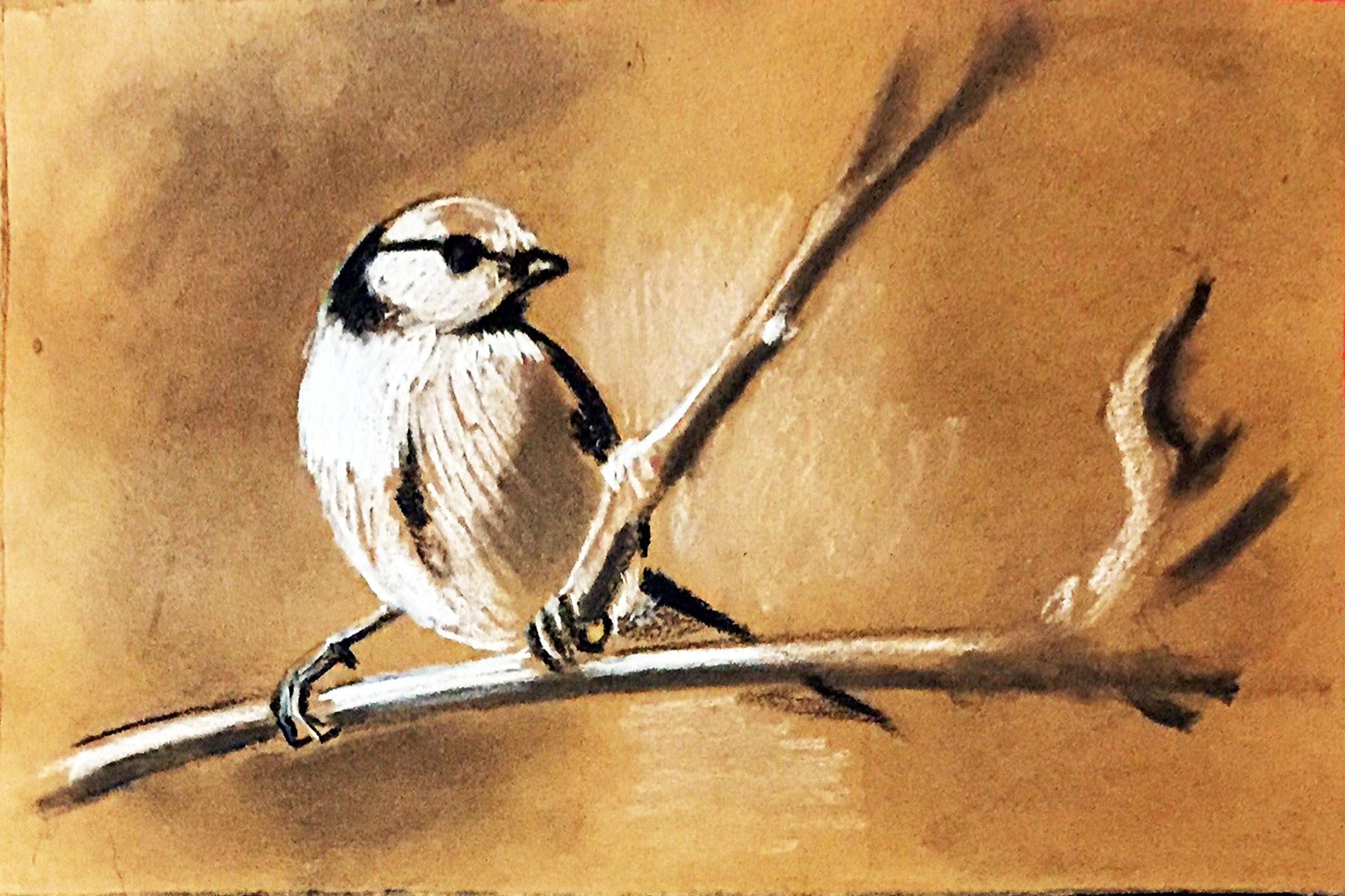 Kohlezeichnung eines Vogels