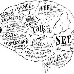 Hogyan hat az agyunkra a rajzolás és festés?