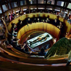 Lenyűgöző kiállítások az év legjobb európai múzeumában